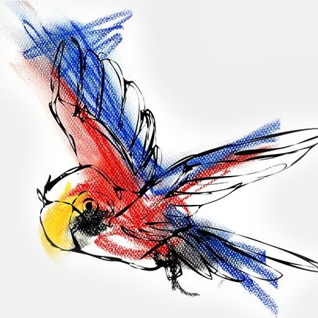 freie Arbeiten, Illustration